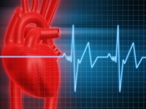 Improving care of new atrial fibrillation